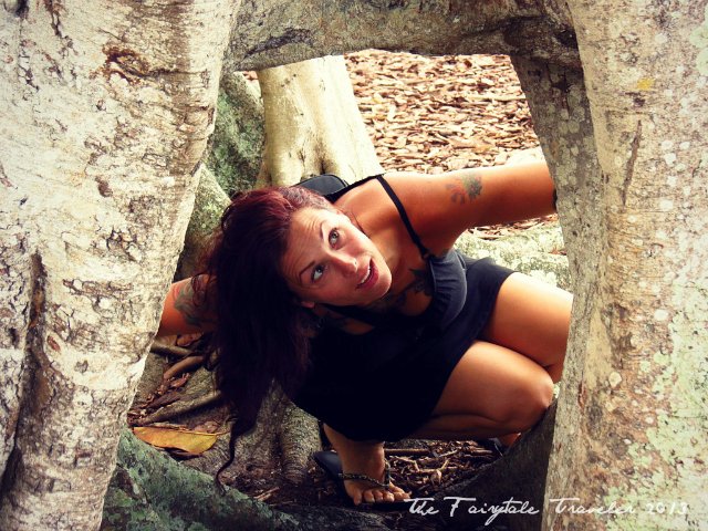Christa Thompson Banyan Tree