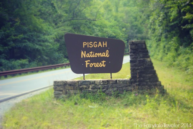Welcome sign as you're entering the Pisgah National Forest. Photo by Christa Thompson