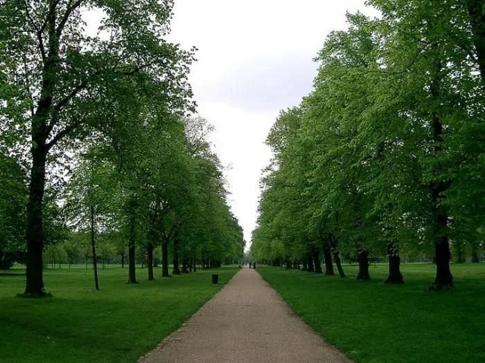 Peter Pan in London Kensington Gardens