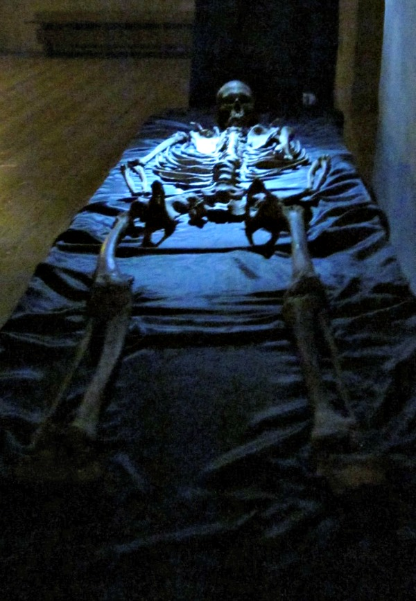 Turku Castle skeleton