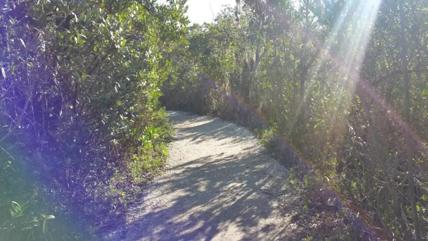 De Soto National Memorial Bradenton Florida, native america in florida