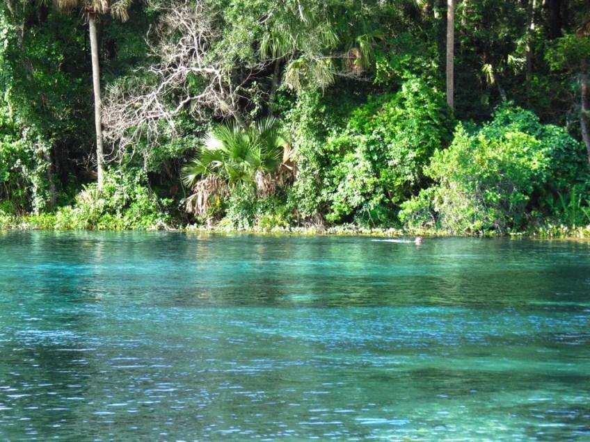 Alexander Springs, Florida springs