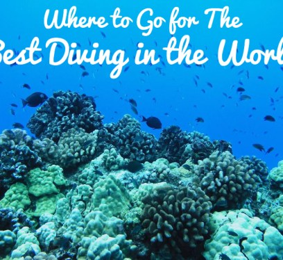 Best Diving in the World