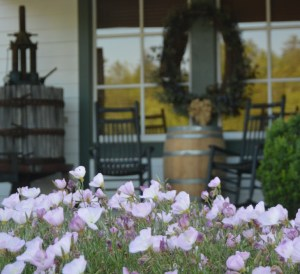 North Georgia Wine Country, Habersham