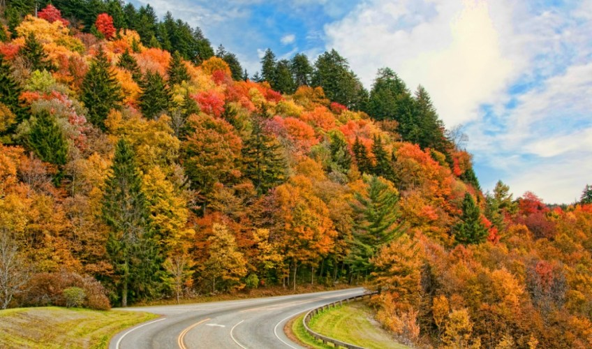 camping on the blue ridge, Things to do in the Smoky Mountains parkway