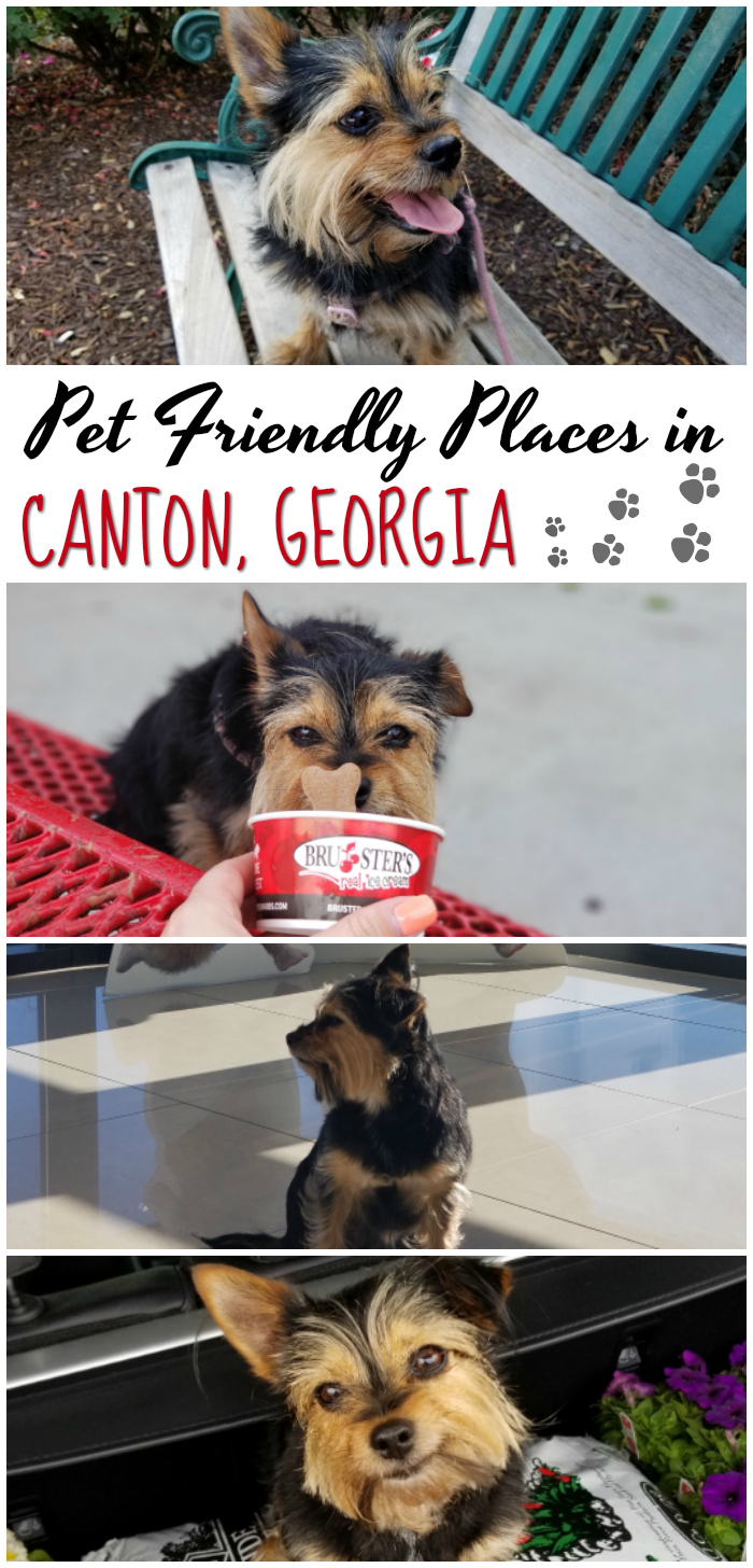Pet Friendly Places in Canton Georgia
