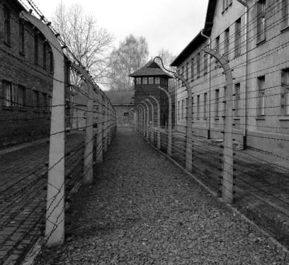 Auschwitz Memorial Museum, Auschwitz history