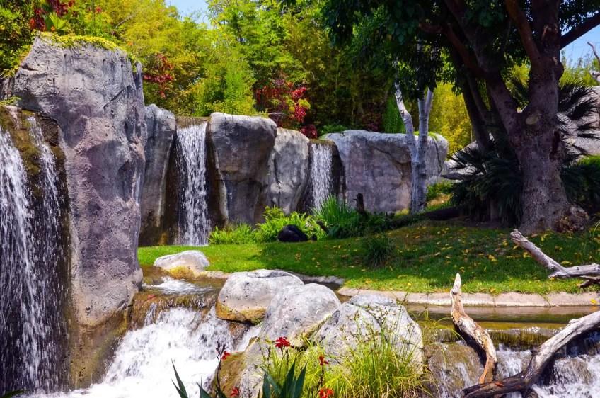 california vacations, san diego zoo