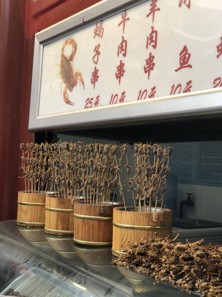 things to do in beijing, fried scorpion, chinese food