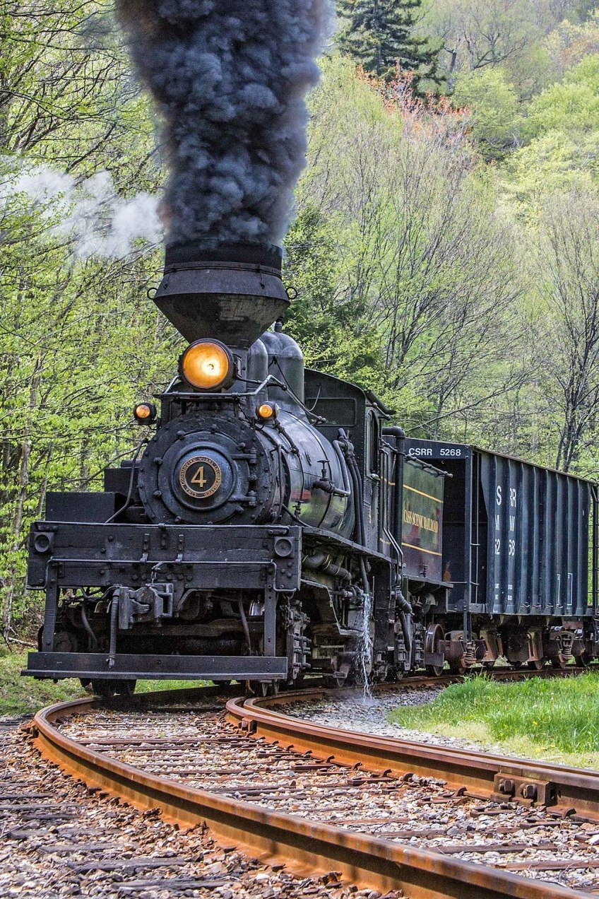 Cass Scenic Railroad State Park, train, things to do in west virginia