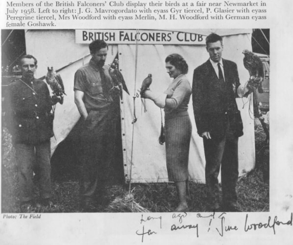 image from newspaper article of the first game fair of the British Falconer Club in 1958