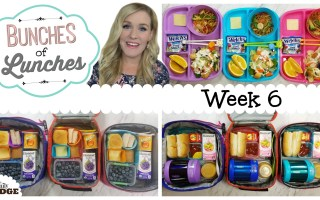 Bunches Of Lunches Giveaway || Sandwich Sealer