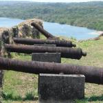 Cannons at War