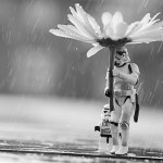 Trooper in the Rain by Si Longworth at Flickr