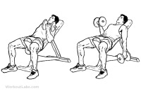 Alternate_Incline_Dumbbell_Curl_M_WorkoutLabs.png
