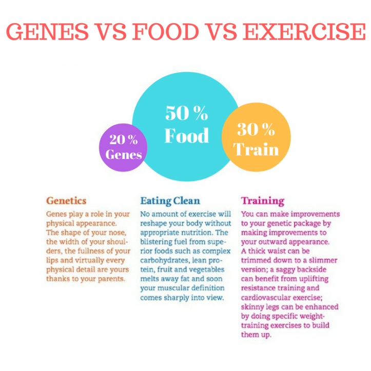genes-vs-food-vs-exercise-3