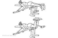 Lying_Leg_Curls_F_WorkoutLabs.png