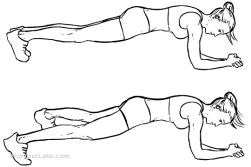 Plank_Jacks_F_WorkoutLabs.png