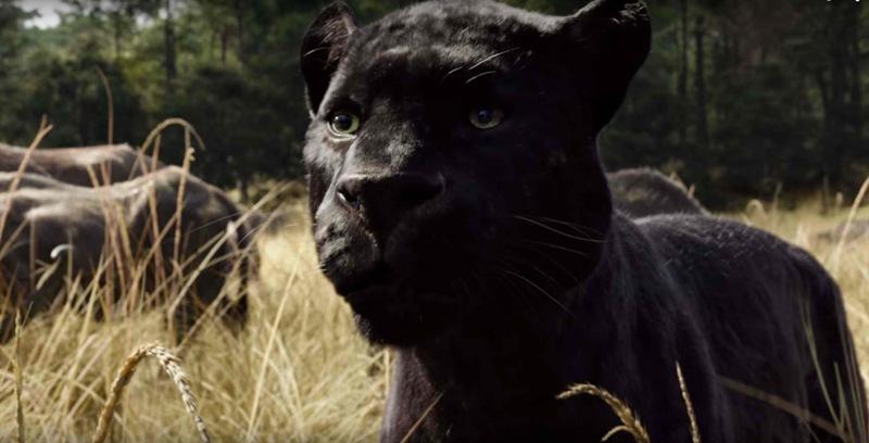 The Jungle Book Ben Kingsley Bageerah (4)