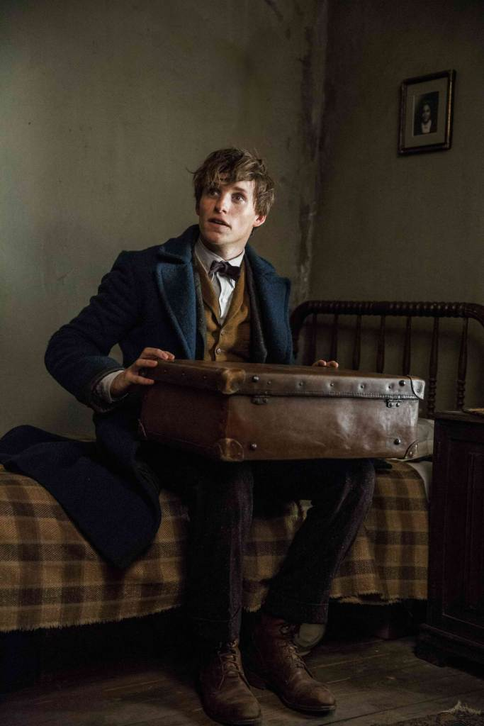 fantastic-beasts-where-to-find-them-eddie-redmayne-2