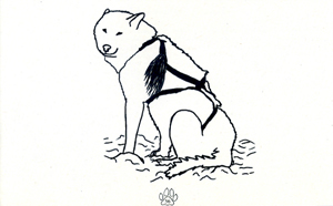Journal of the Inuit Sled Dog International