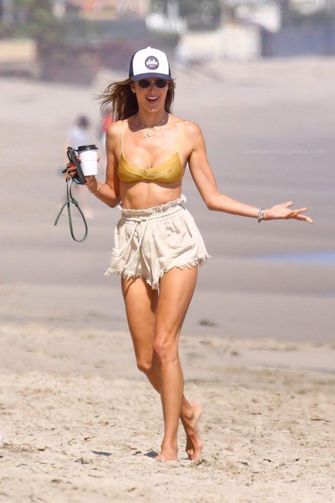 Alessandra Ambrosio Bikini 4