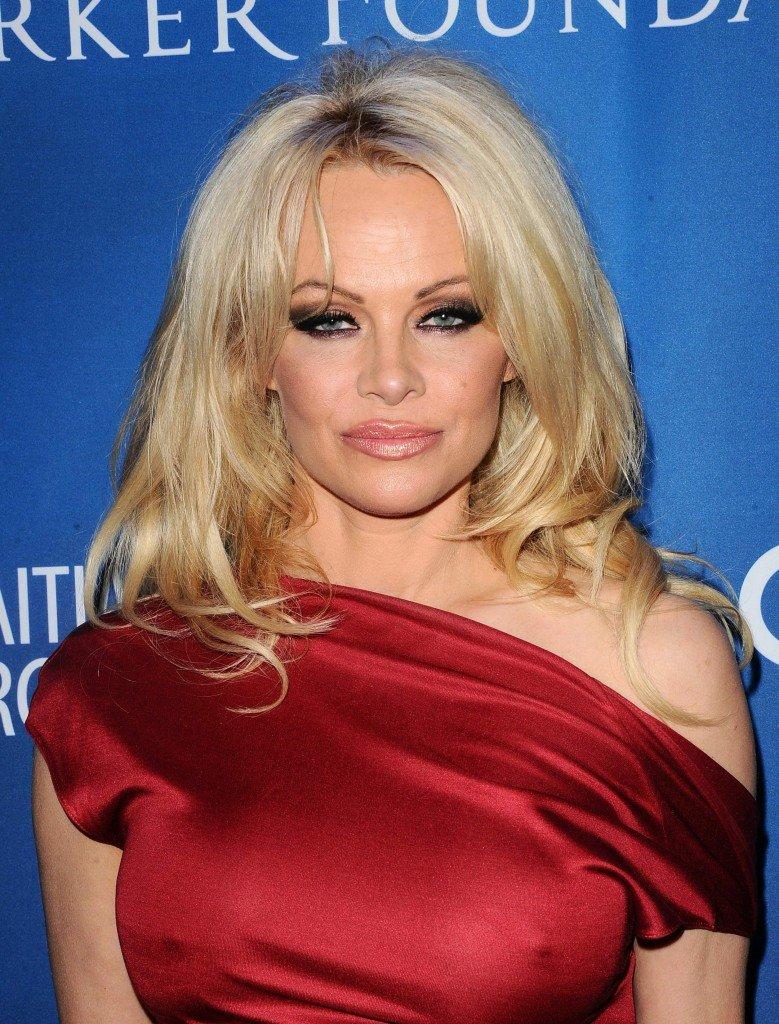 Pamela Anderson Pokies (16 Photos)