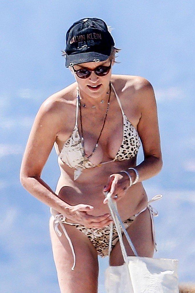 Sharon Stone Tit Slip (82 Photos)