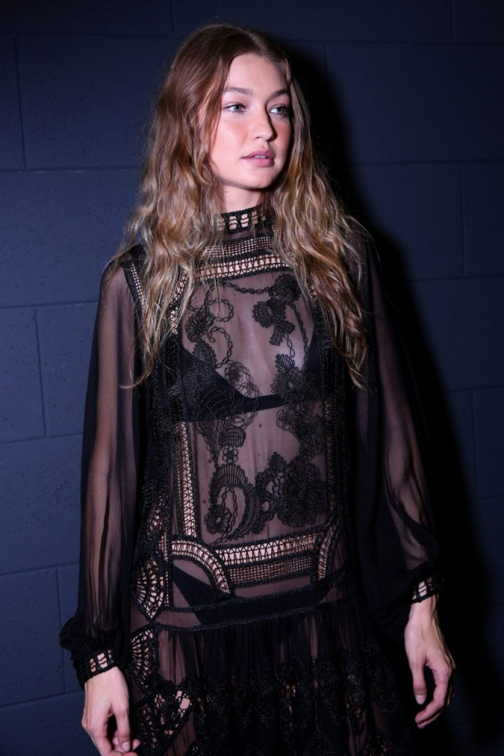 Gigi Hadid Sexy (14 Photos)