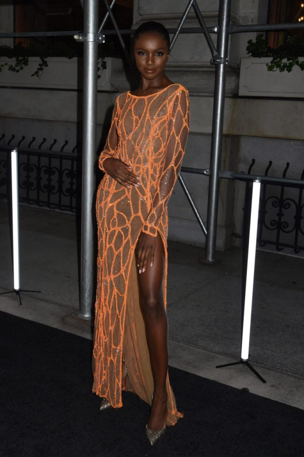 Leomie Anderson See Through (34 Photos)