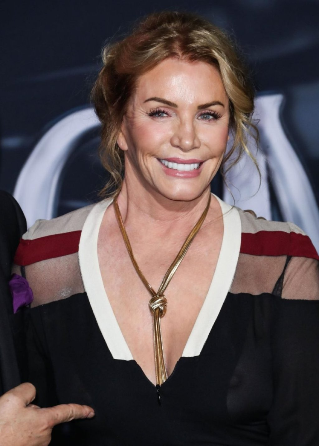 Shannon Tweed See Through (48 Photos)