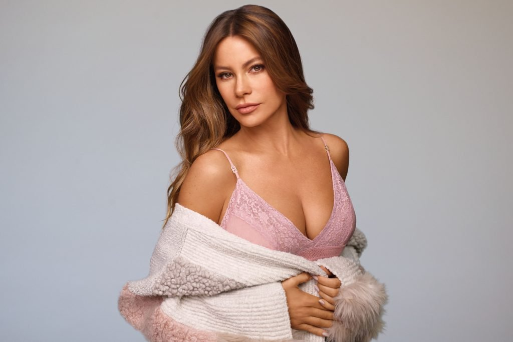 Sofia Vergara Sexy (1 Photo)