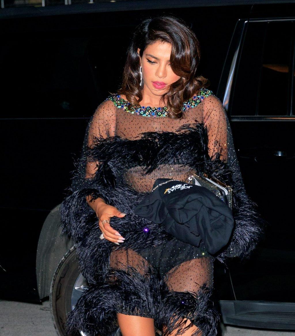 Priyanka Chopra Sexy (36 Photos)