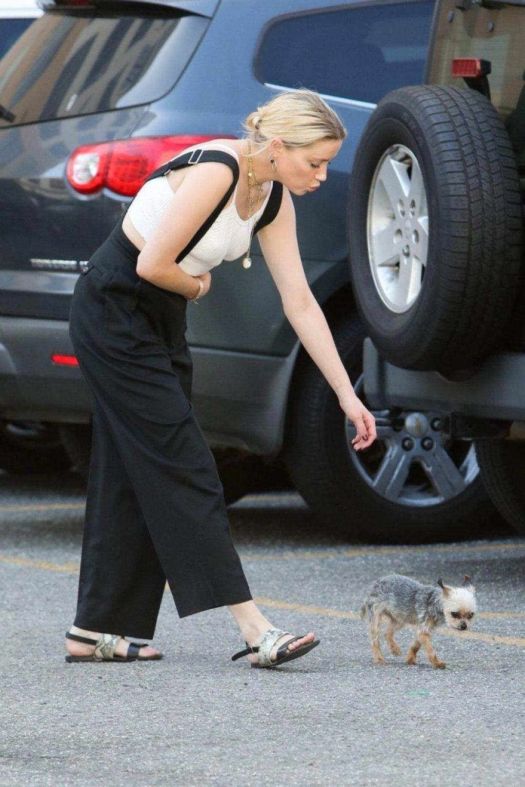Amber Heard Braless (22 Photos)