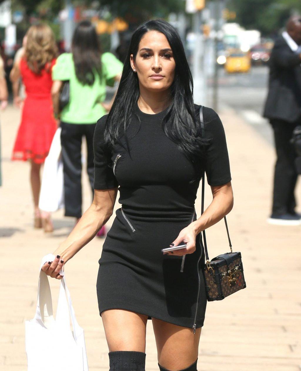 Brie Bella, Nikki Bella Sexy (142 Photos)