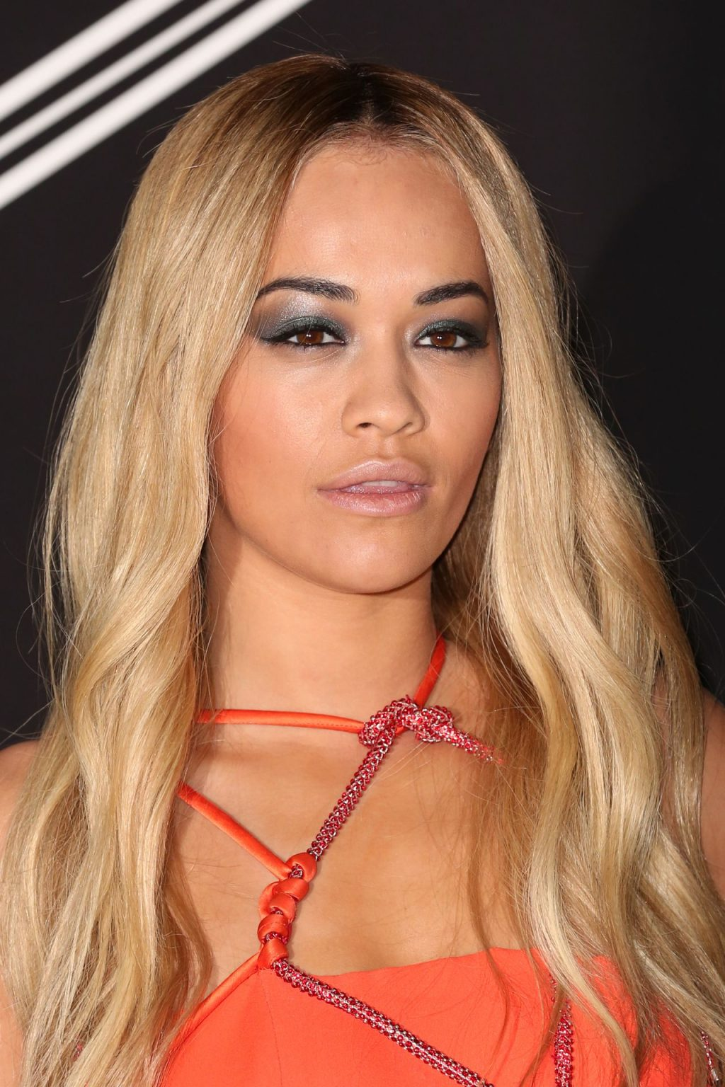 Rita Ora Pantyless (59 Photos)