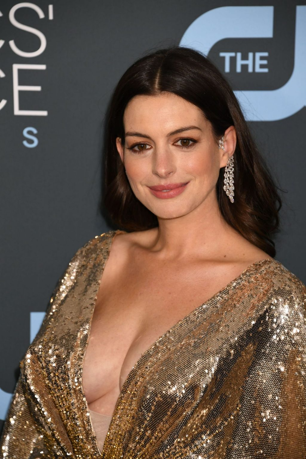Anne Hathaway's Tits (75 Photos)