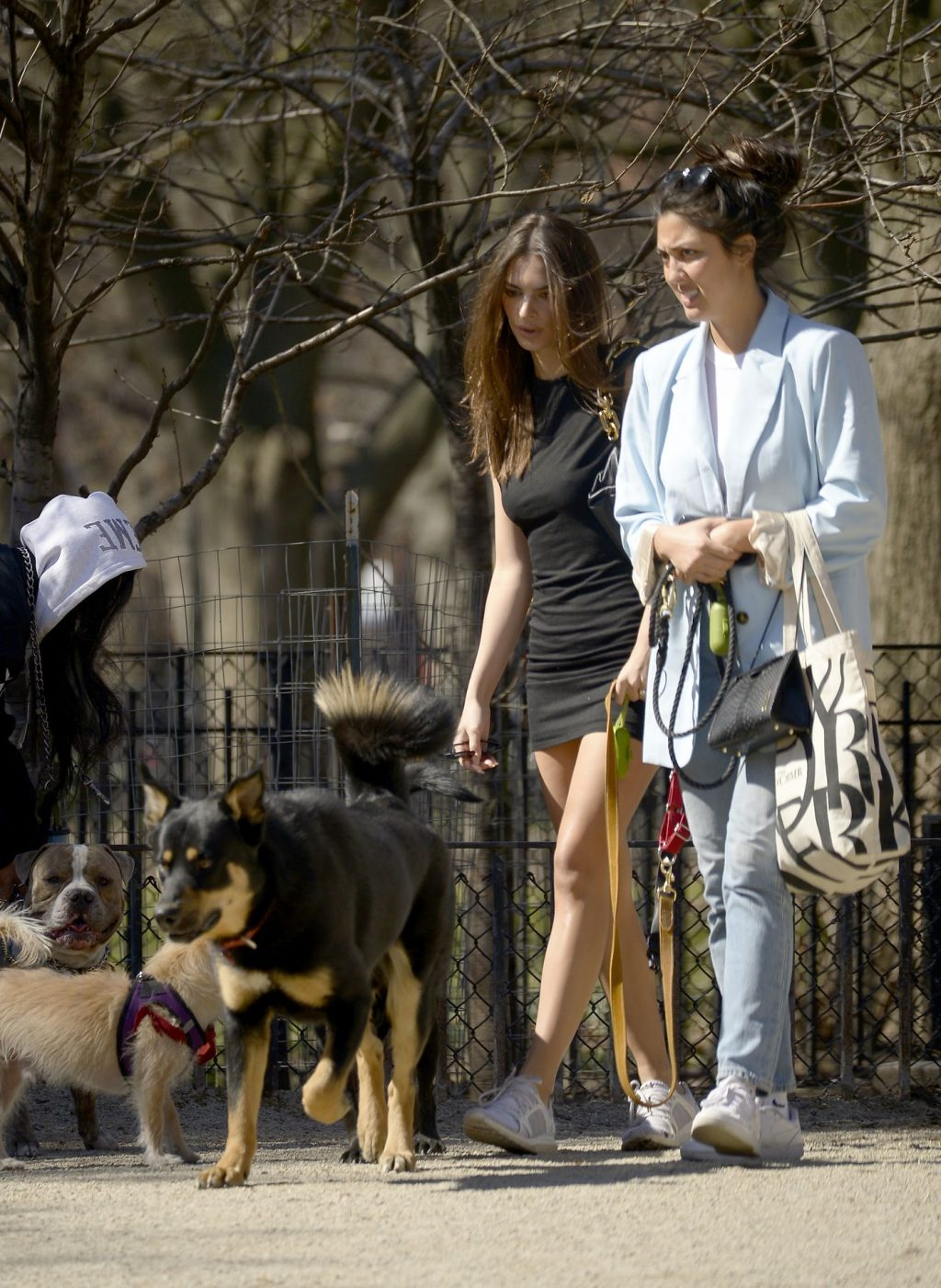 Emily Ratajkowski Takes Her Dog to a Dog Park in New York City (29 Photos)