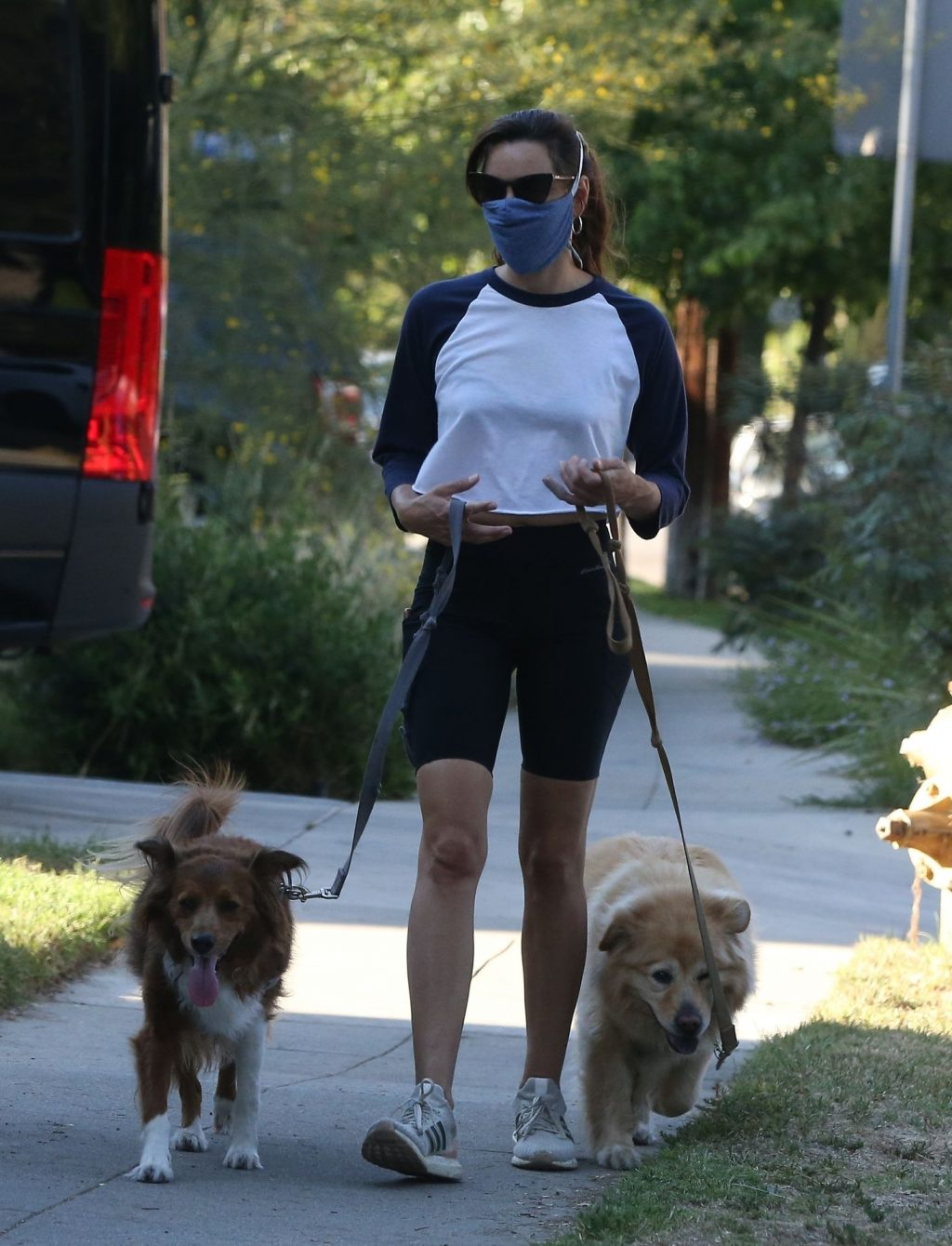 Braless Aubrey Plaza Walks Her Dogs with a Girlfriend (16 Photos)