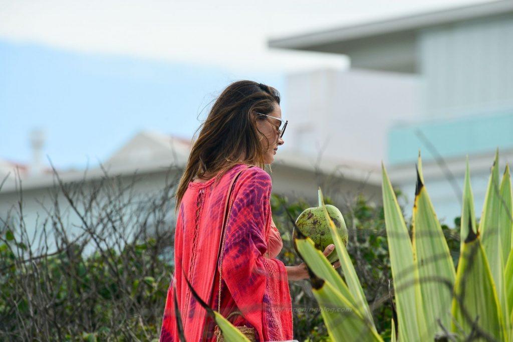Alessandra Ambrosio Looks Hot on the Beach in Brazil (64 Photos)