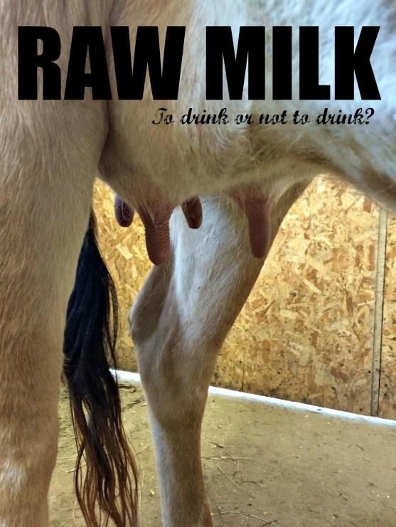 raw milk 1