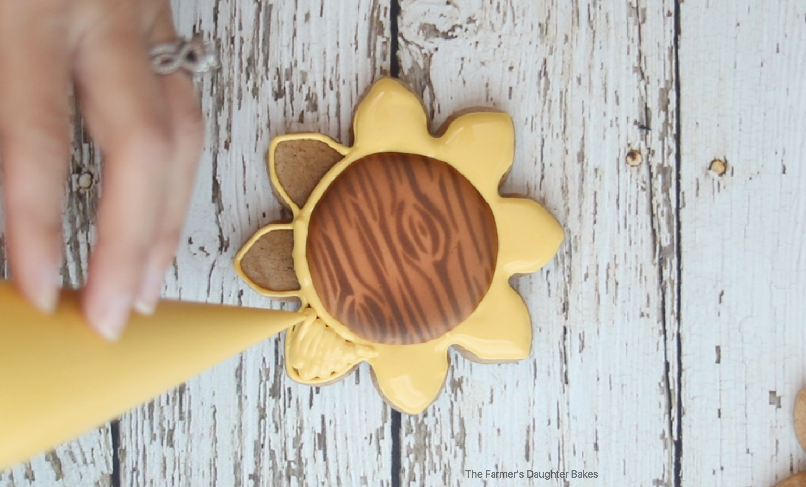 sunflower, sunflower cookies, thanksgiving cookies, fall, fall cookies, thanksgiving