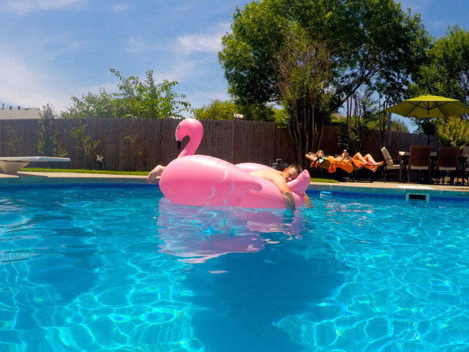 When it's your birthday, you chill on a pink flamingo.