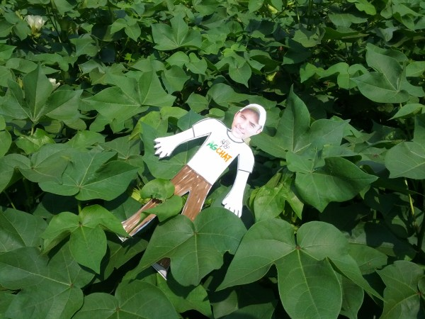 #FlatRyan in Cotton via thefarmerslife.com