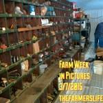 Inventory via thefarmerslife.com