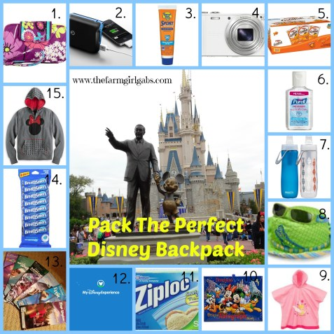 Disney Backpack Collage