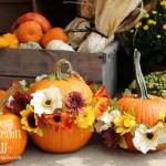 Festive Flower Pumpkins