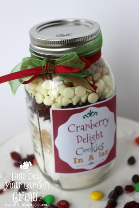 Cranberry Delight Cookies in A Jar