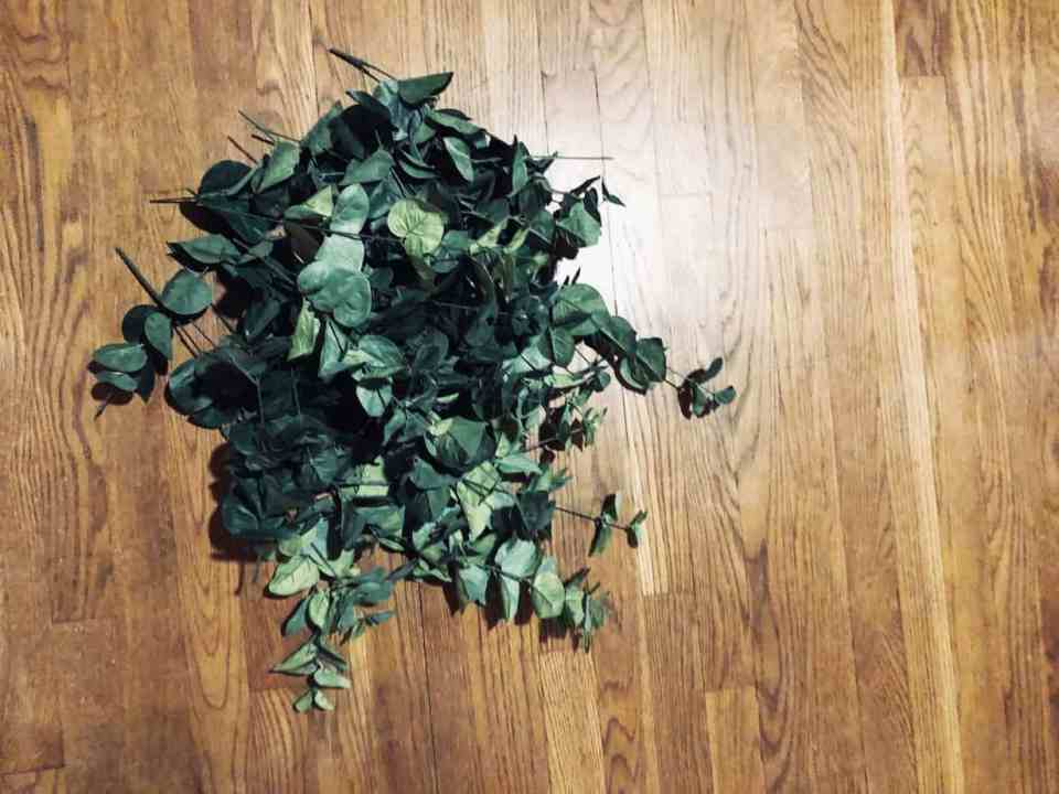 A bundle of Eucalyptus on the table.