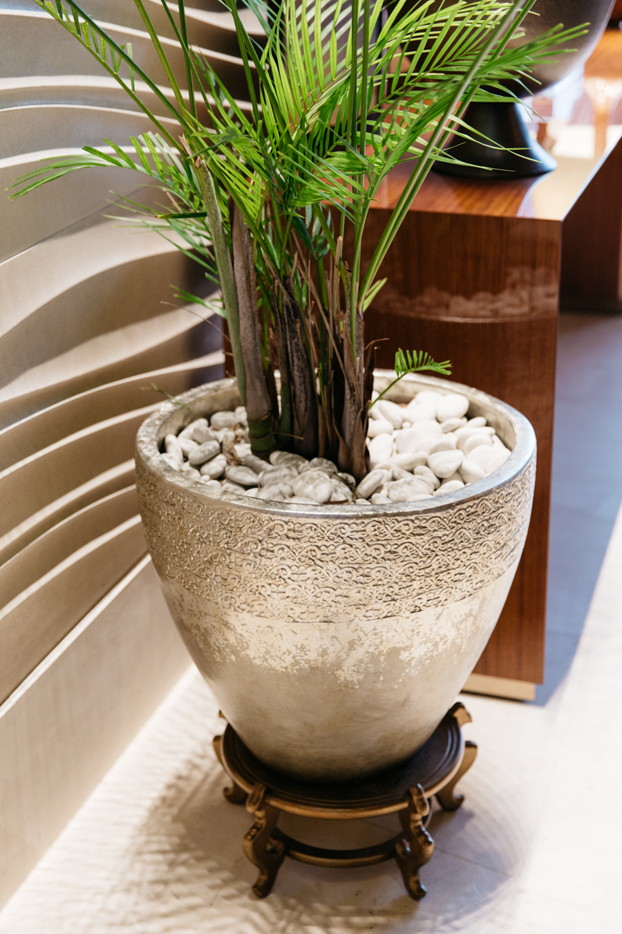 Interior design, silver pot with palm tree.